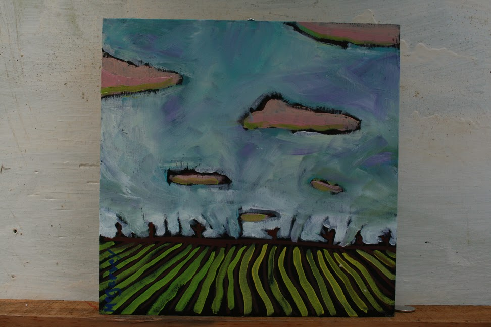 Pink Clouds over a Stripped Field